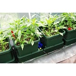 Autopot Easy2grow Watering Kit 2