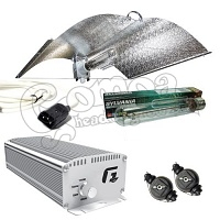 600W Light Set With Digital Ballast