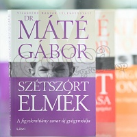 Gabor Maté, MD.: Scattered Minds