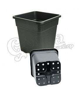Square Plastic Plant Pot (Greek Pattern)