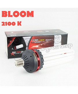 Advanced-Star ProStar CFL Energiatakarékos Izzó 2100K BLOOM