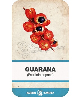 Guarana (Paullinia cupana) powder