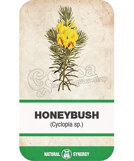Honeybush (Cyclopia spp) calming tea