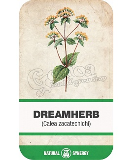 Dream Herb (Calea zacatechichi) herba