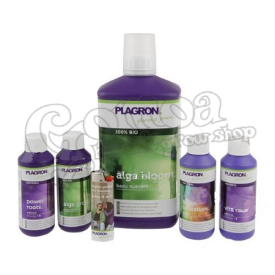 Plagron Top Grow Box (bio)