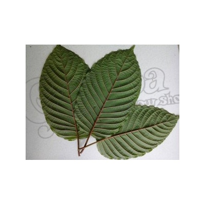 Red Vein Kratom 2