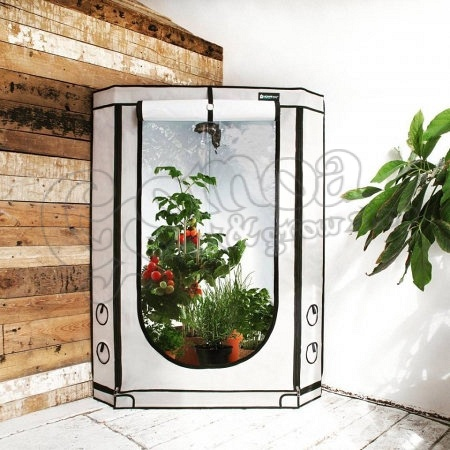 Homebox Vista Grow Tent  sc 1 st  Gomoa shop & Homebox Vista Grow Tent - Homebox - Grow Box - Grow Shop - Gomoa shop